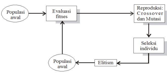 revisi siklus algoritma genetiaka
